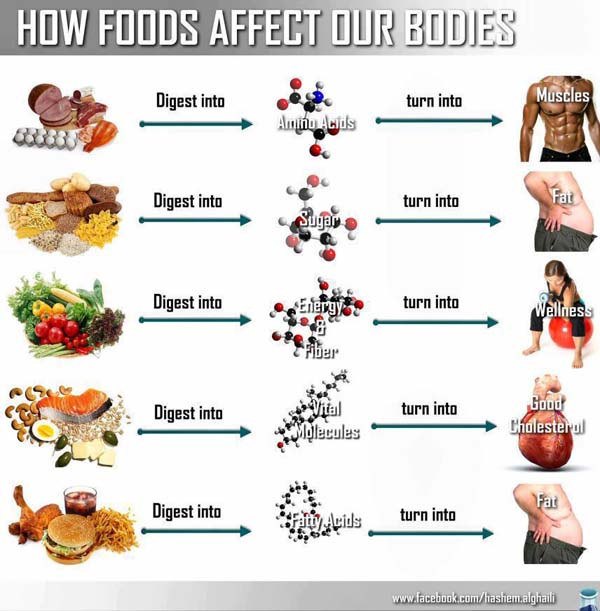 Infographic: How Foods Affect Our Bodies | Infographic A Day